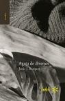 AGUJA DE DIVERSOS 95 X 147